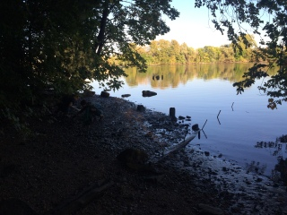Bartram's Park Clean Up